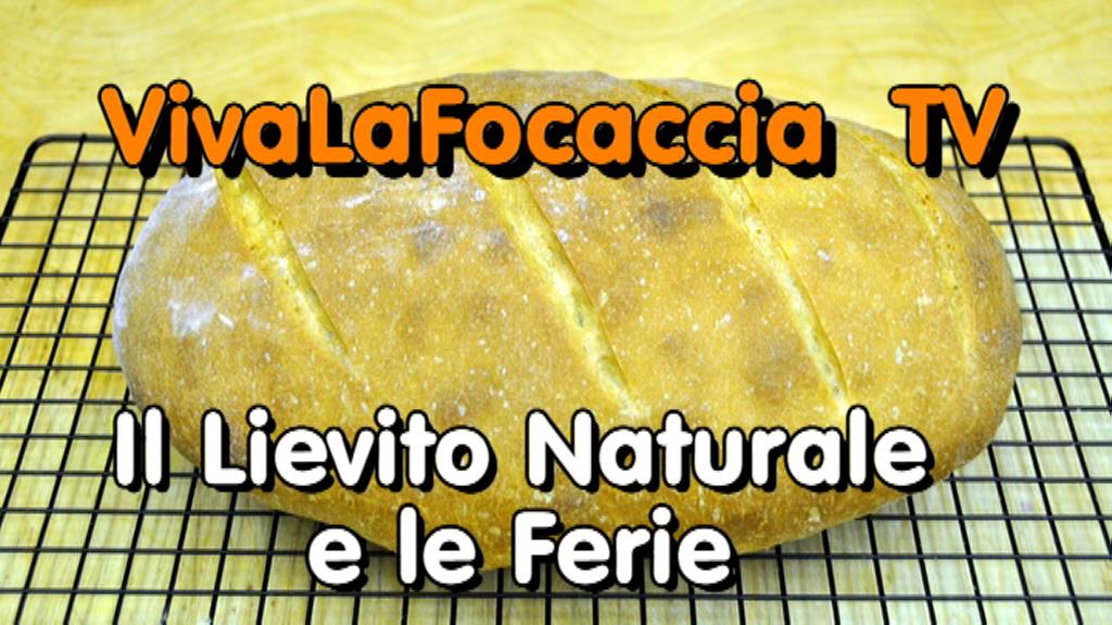 VivaLaFocaccia TV – Puntata 4 – Il Lievito Naturale e le Ferie